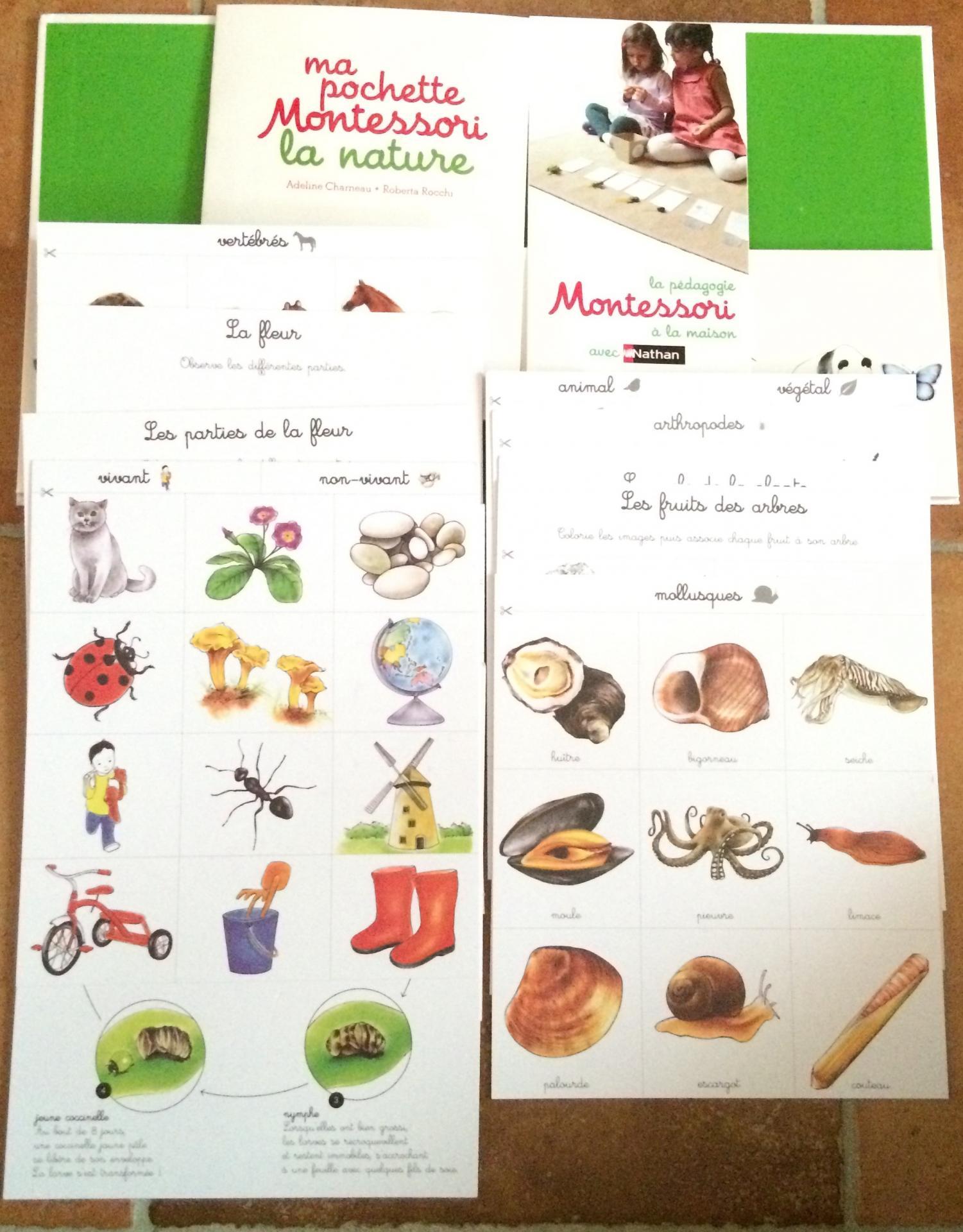 Extrait 2 ma pochette Montessori la nature