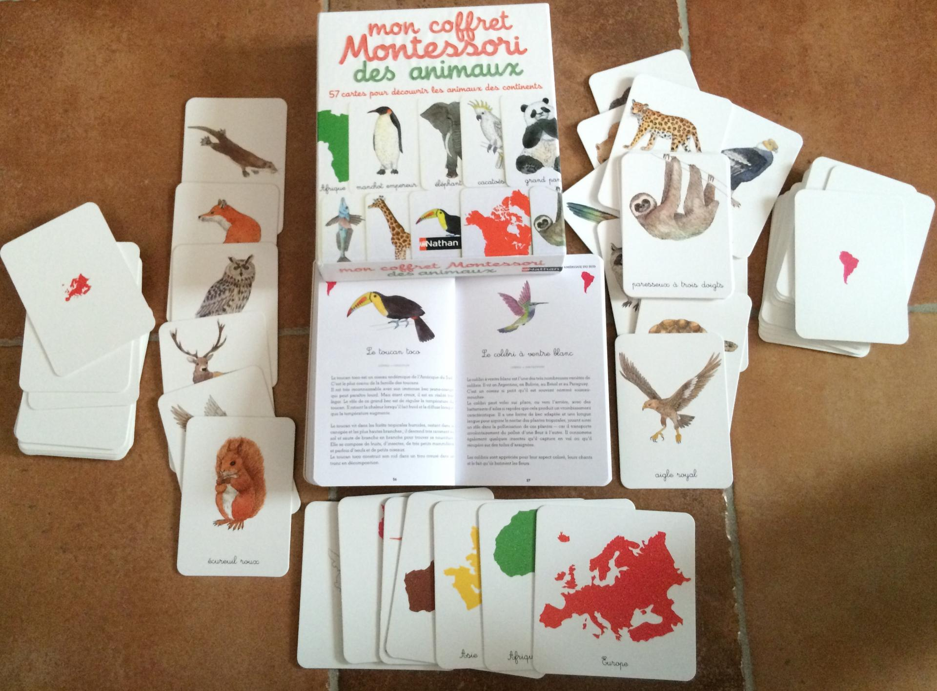 Mon coffret Montessori des animaux extrait